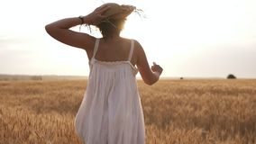 Young woman running in the wheat field while holding her straw hat. Sun shunes in the clear sky. Summer day. Rare view.  stock video