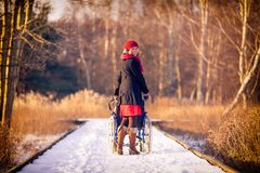 Young woman running the wheelchair in the park Royalty Free Stock Photos
