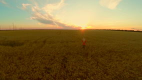 Young woman runs on a wheat field to the sunset. Slow motion stock video