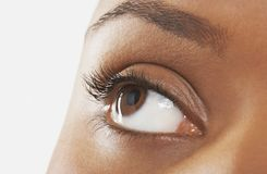 Young Woman's Eye Royalty Free Stock Photos