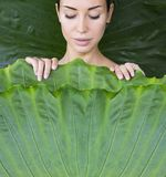 The girl is covered with leaves. Young woman`s face surrounded by tropical leaves royalty free stock images