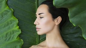 Young woman`s face surrounded by tropical leaves. stock photography