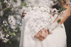 The young woman`s hands holding the bottom own pregnant tummy. White gown is the shadow from the flowering branches of cherry blos stock photos