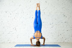 supported headstand yoga pose stock photos images