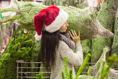 Young woman in santa hat carries Christmas tree on Stock Photos
