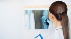 Young woman scientist working with radiograph at the laboratory Stock Images