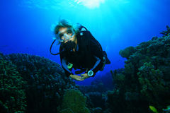 Young Woman Scuba Diver. Swims over a coral reef Royalty Free Stock Photography