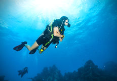 Young woman scuba diver exploring sea bottom. Underwater life with beautiful rocks and coral Stock Photography