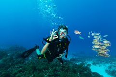 Young woman scuba diver showing OK gesture stock image