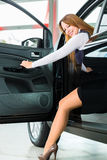 Young woman in seat of auto in car dealership. Young woman sits in new car on driver seat in a car dealership, obviously she is buying the auto Stock Photo