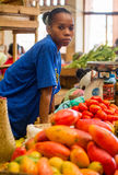 Young woman sells fruit in the market. stock photography