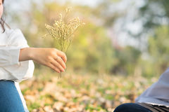 Young woman sending flower for boyfriend in public garden Stock Image
