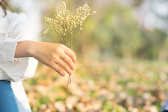Young woman sending flower for boyfriend in public garden Royalty Free Stock Image