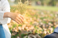 Young woman sending flower for boyfriend in public garden Stock Photos