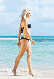 Young woman in a sexy bikini posing on the beach Royalty Free Stock Photography