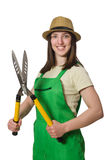 Young woman with shears on white Stock Image