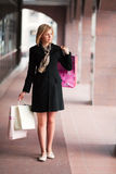 Young fashion woman with shopping bags  Royalty Free Stock Images