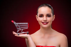 The young woman with shopping cart Royalty Free Stock Photos