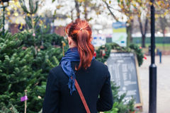 Young woman shopping for christmas trees Stock Image
