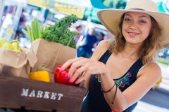 Farmers Market. Young woman shopping at the local Farmers market stock image