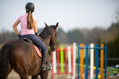 Young woman show jumping Stock Images