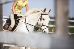 Young woman show jumping Royalty Free Stock Image
