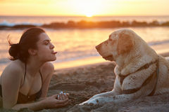 Young woman showing tongue. To labrador dog lay on beach ocean sunset stock photography