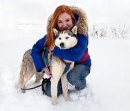 Young woman and siberian husky in winter Royalty Free Stock Photography