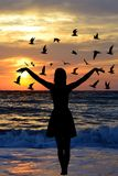 Young woman silhouette with birds on the seaside. Young woman silhouette with flock birds on the seaside Stock Images