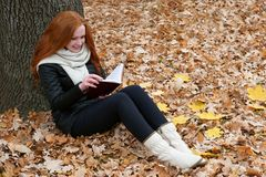 Young woman sit near tree in autumn park and read book, yellow leaves Royalty Free Stock Images
