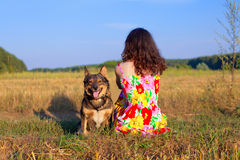 Young woman sitting with her dog. On the meadow at sunset. Dog looking at the camera, woman sitting back to camera stock photo
