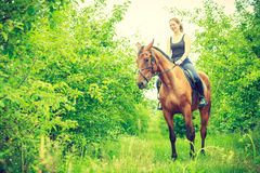 Young woman sitting on a horse Royalty Free Stock Photography