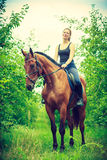Young woman sitting on a horse Royalty Free Stock Photo