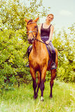 Young woman sitting on a horse Royalty Free Stock Photos