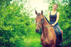 Young woman sitting on a horse Stock Photography