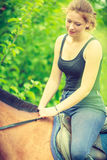 Young woman sitting on a horse Stock Photos