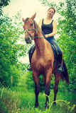 Young woman sitting on a horse Stock Image