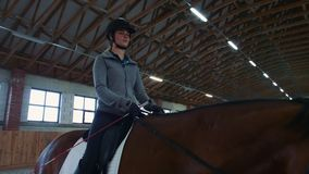 Young woman sitting on horseback and riding on covered sandy arena having practice. Woman on horse walking slowly on arena. Young woman sitting on horseback and stock footage