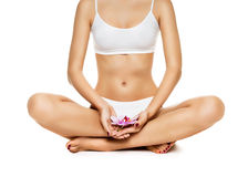 Young woman sitting in lotus position. Over white background royalty free stock image