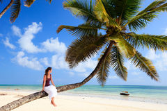Young woman sitting on palm tree. At exotic beach Royalty Free Stock Image