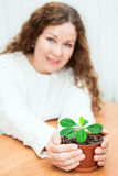 Young woman sitting at the table and stretched in hands green plant. In flowerpot stock images