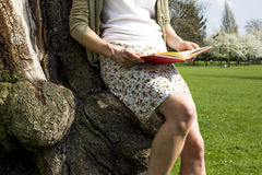 Young woman sitting in tree reading. Detail of a young woman in a summer dress reading in a tree Royalty Free Stock Photo
