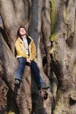 Young woman sitting on tree and relaxing Stock Image