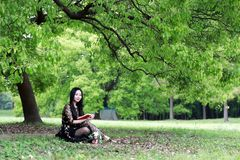 Read a book sitting under a blossom tree royalty free stock photography