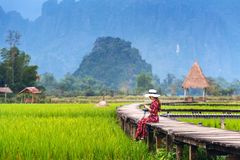 Young woman sitting on wooden path with green rice field in Vang Vieng, Laos Royalty Free Stock Images