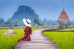 Young woman sitting on wooden path with green rice field in Vang Vieng, Laos Royalty Free Stock Image