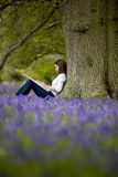 A young woman with sketchbook sitting against a tree trunk in a field of bluebells Royalty Free Stock Image