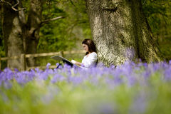 A young woman with sketchbook sitting against a tree trunk in a field of bluebells Royalty Free Stock Photo
