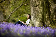 A young woman with sketchbook sitting against a tree trunk in a field of bluebells Stock Photos