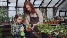 Young woman skilled gardener is teaching her curious little daughter to wash leaves of green pot plantst with spray